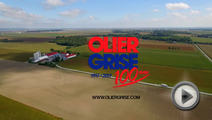 Olier Grise